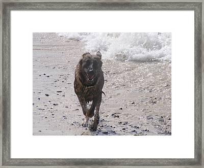 Wave Runner Framed Print by Rebecca Flaig