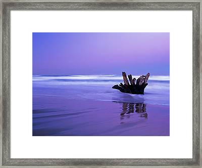 Waves Break On The Beach At Dawn Framed Print by Robert L. Potts