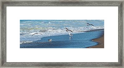Waves In The Pacific Ocean, Point Reyes Framed Print