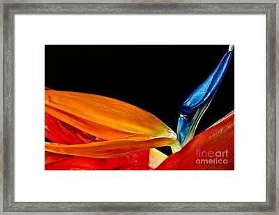 Waves Of Color 2009 Framed Print by Art Barker