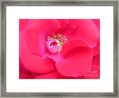 Framed Print featuring the photograph Waves Of Passion by Agnieszka Ledwon