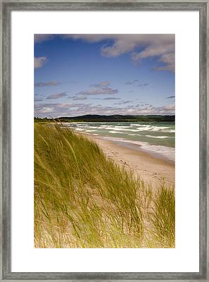Waves Of Water And Grass Framed Print by Thomas Pettengill
