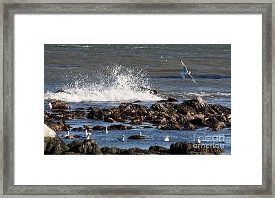 Waves Wind And Whitecaps Framed Print by John Telfer