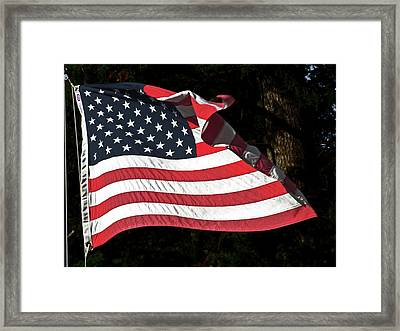 Waving Flag Framed Print