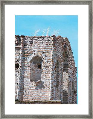 Framed Print featuring the photograph Waving To The Sky by Kerri Mortenson