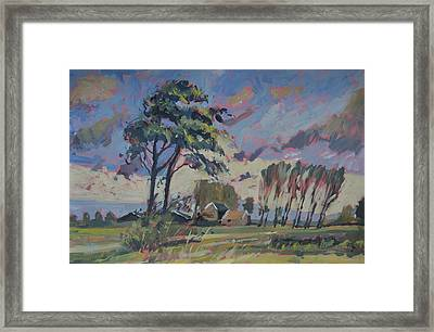 Waving Twin Trees Framed Print