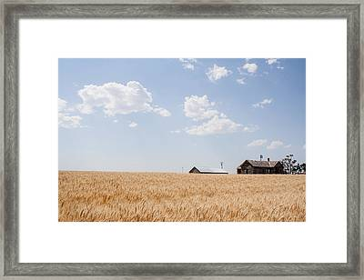 Waving Wheat Homestead Framed Print