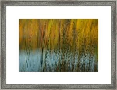 Wavy Framed Print by Randy Pollard