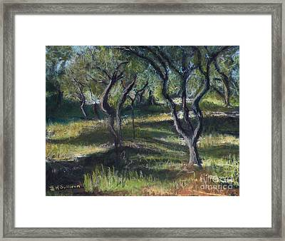 Vincent's Wavy Trees Framed Print by Laura Sullivan
