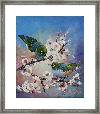 Wax Eyes On Blossom Framed Print by Peter Jean Caley