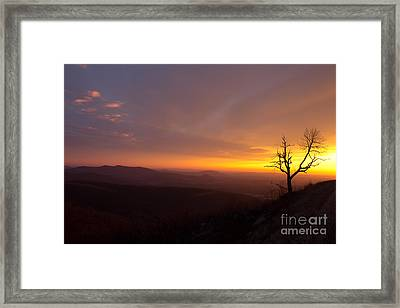 Way Of The Morning Framed Print