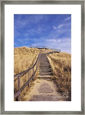 Way To Dune Framed Print by Angela Doelling AD DESIGN Photo and PhotoArt