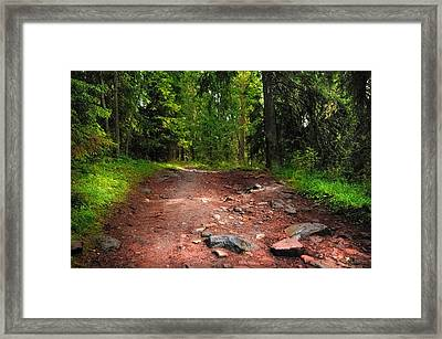 Way To The Shrine. Valaam. Northern Russia Framed Print by Jenny Rainbow