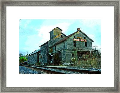 Wayne Feeds Framed Print by Mike Flynn