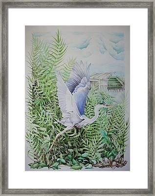 Wrightsville Blue Heron Framed Print