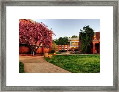 Wcu's Walkway To Killian Framed Print