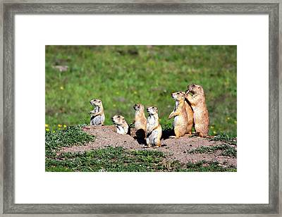 We Are Family Framed Print by Lana Trussell