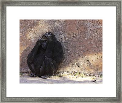We Are More Alike Then You Think Framed Print by Ruth Jolly