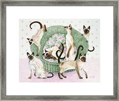 We Are Siamese If You Please Framed Print by Pat Scott