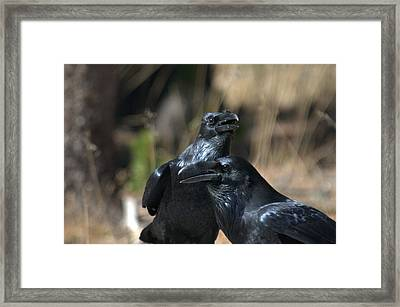 We Are The Best Of Friends Framed Print