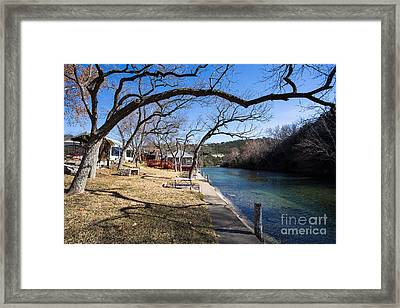 We Are Trees And We Are Life Framed Print