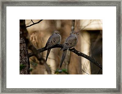 We Came Together - We're Leaving Together Framed Print