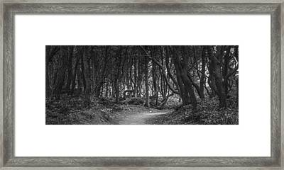 We Follow The Path Framed Print by Jon Glaser