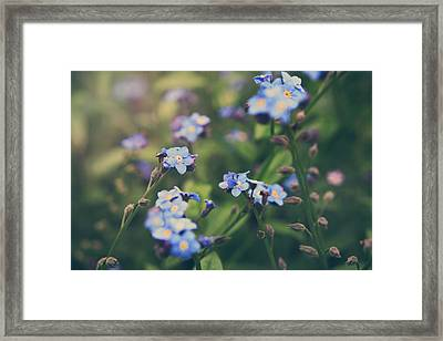 We Lay With The Flowers Framed Print by Laurie Search