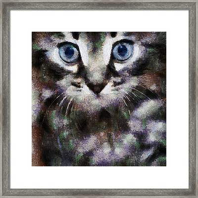 We Live In The Same World Framed Print by Yury Malkov