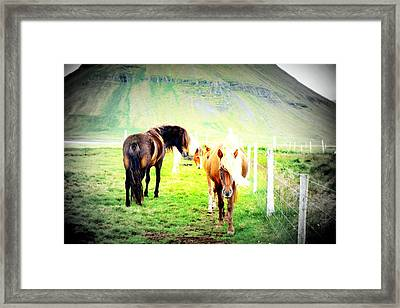 We Live Right Here Inside This Fence And Under This Big Mountain  Framed Print by Hilde Widerberg