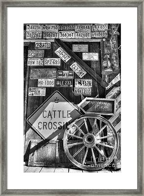 We Love Rabbit Hash Bw Framed Print by Mel Steinhauer