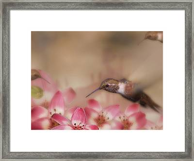 We Love Those Lilies Framed Print