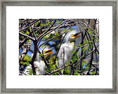 We Love You Mama Framed Print by Lydia Holly