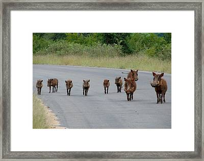 We Own The Road Framed Print by Ramona Johnston