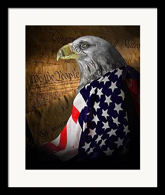 Old Glory Framed Prints