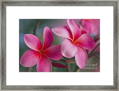 Framed Print featuring the photograph We Were Together . . .  by Sharon Mau
