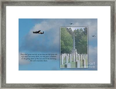 We Will Remember Them Framed Print by Terri Waters