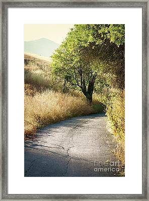 Framed Print featuring the photograph We Will Walk This Path Together by Ellen Cotton