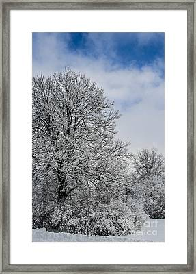 Wealth Of Snow After Nemo Framed Print