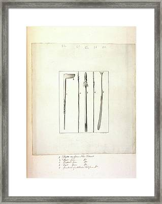 Weapons Of New Zealand Framed Print by British Library