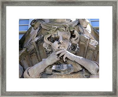 Weathered And Wise Framed Print by Ed Weidman