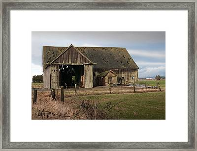 Weathered Barn Of Skagit County Framed Print by Kent Sorensen