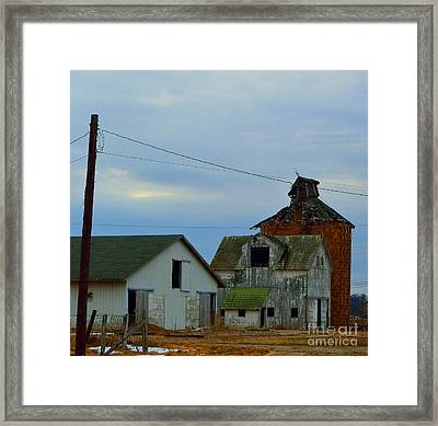 Weathered Beauty Framed Print by Alys Caviness-Gober