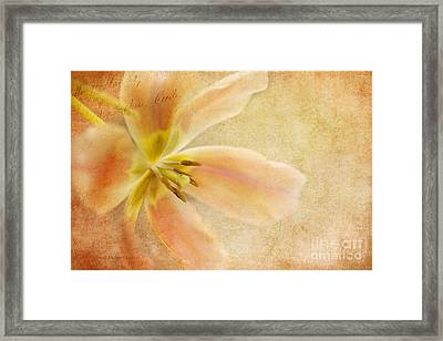 Weathered Beauty - Of  Days Gone By Framed Print by Beve Brown-Clark Photography