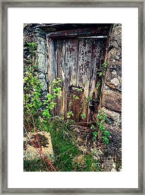 Weathered Door Framed Print by Adrian Evans