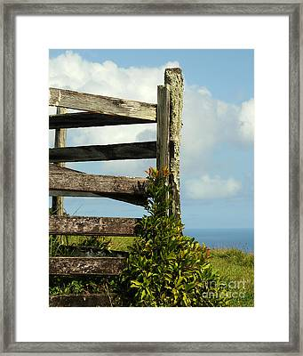 Weathered Fence Framed Print by Vivian Christopher