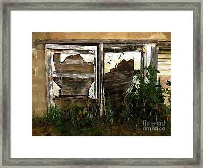 Weathered In Weeds Framed Print by RC DeWinter