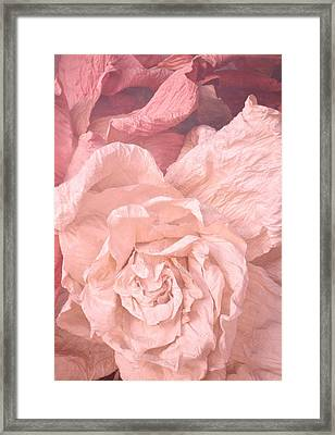 Weathered Roses Framed Print