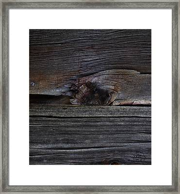 Weathered Wood - Dusk Framed Print by Patricia Kay