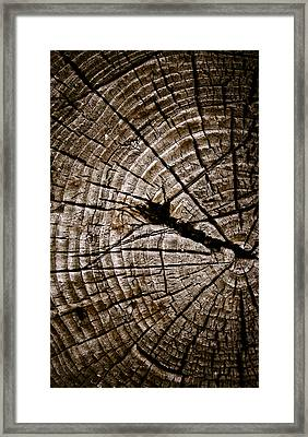 Weathered Wood Framed Print by Frank Tschakert